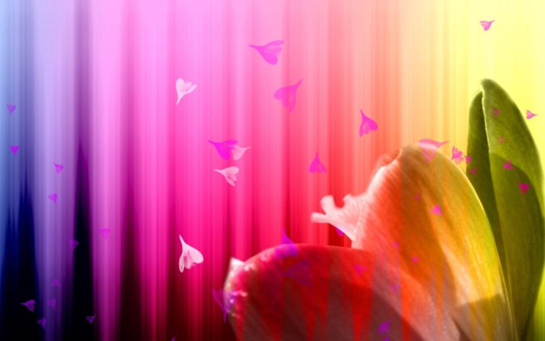 Koloroterapia- znaczenie kolorów